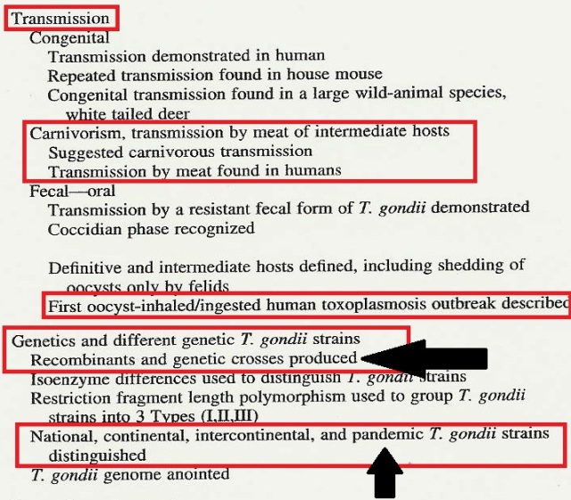 The History of Toxoplasma Gondii pg 2 Crop Highlight